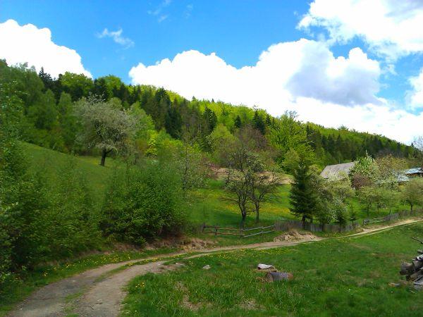 beskid śląski wiosną, objawy