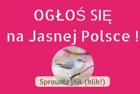 Jasna Polska to platforma wyszukiwania i ogłaszania wydarzeń, warsztatów, osób, miejsc, duchowa Polska świadoma Polska alternatywna Polska poza matrixem