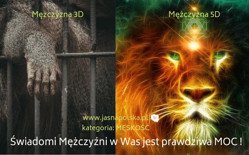 Jasna Polska, zdrowie, homeopatia, refleksologia, ajurweda, medycyna chinska, medycyna naturalna, uzdrowiciele, bioterapeuci, zielarze, uzdrowiciele, chiropraktyka, biorezonans, naturoterpaia, masaze, tantra, medytacja, ezoteryka, ekonomia spoleczna, slowianie, swiadomy mężczyzna