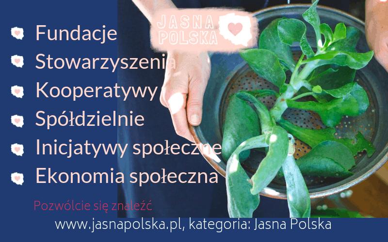fundacje-stowarzyszenia-kooperatywy-spoldzielnie-socjalne-inicjatywy-spoleczne-ekonomia-spoleczna-kategoria-jasna-polska