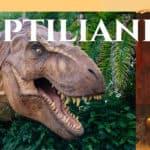 Jak to jest z tymi reptilianami? Co to za ustrojstwo. I czy mają dusze?
